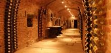J'ai enfin choisi ma cave à vin sur caveavin.biz