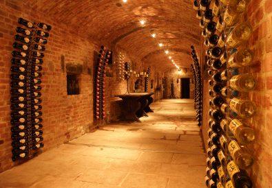 Une cave à vin à acheter bientôt ? caveavin.biz